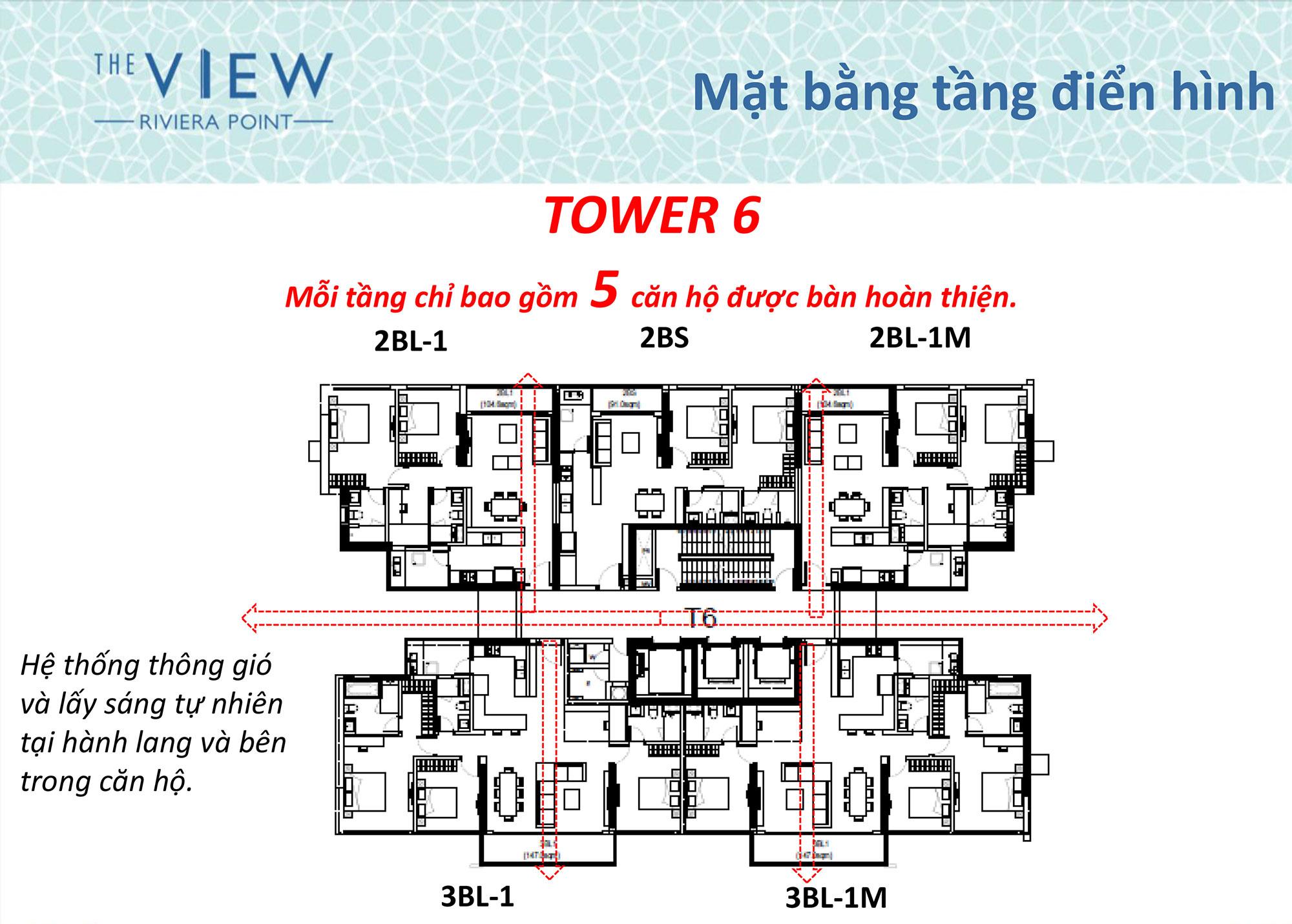 Mặt bằng tháp T6 căn hộ The View Riviera Point quận 7.